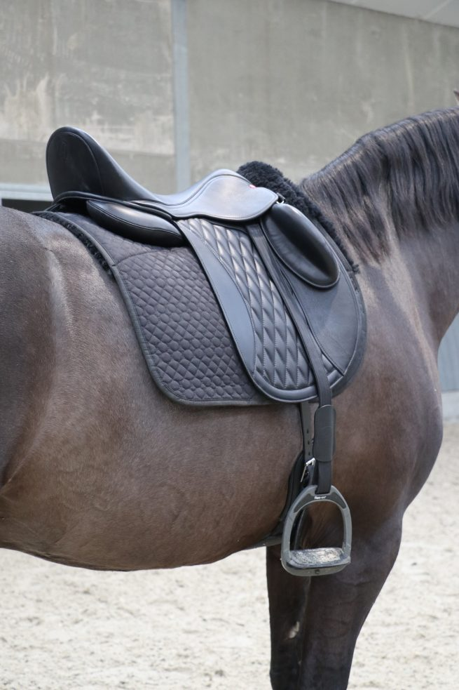 EDIX Tariq soft tree dressage saddle